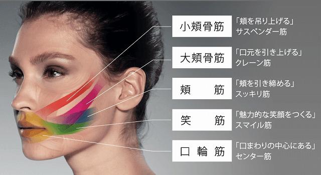 顔の筋トレ